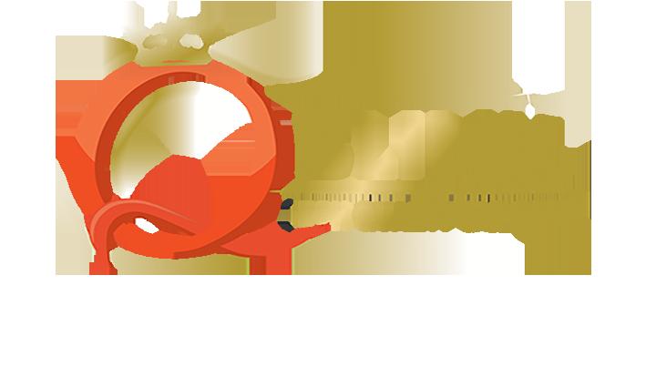 QBlink2